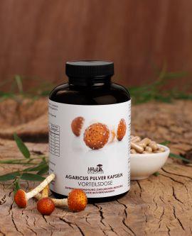 Agaricus (ABM) Pulver Kapseln