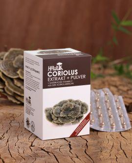 Coriolus versicolor Extrakt+Pulver