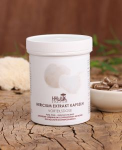 Hericium Extrakt Vorteilsdose 240 Stk.