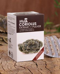 Coriolus versicolor Extrakt+Pulver 120 Stk.